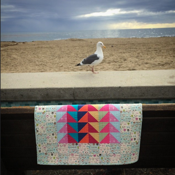 IG Mini by Karen Foster, Capitola Quilter