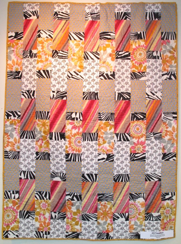 Rectangles by Diana Mc Clun and Laura Nownes, machine quilted by Kathy August